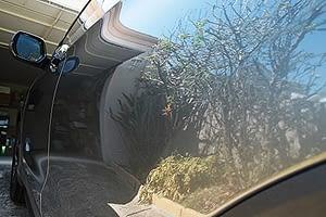 2015 Honda CRV paint protection melbourne Paint Protection Melbourne image 8