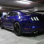 Ford Mustang wearing Cquartz finest paint protection in Melbourne Paint Protection Melbourne image 35